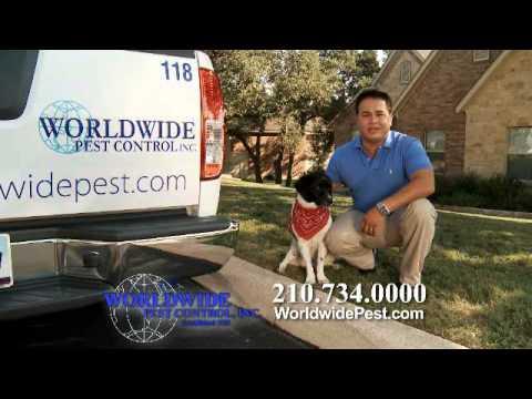 Worldwide Pest Control / Richard Young