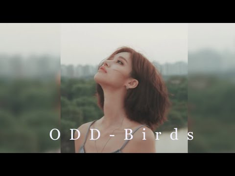 ODD - Birds (I want to protect you one more time, The day after we broke up, 헤어진 다음날 ost)