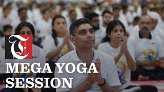 Full Length Yoga Session Invites – Meta Morphoz