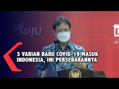 Hati-Hati! 3 Varian Baru Covid-19 Masuk Indonesia, Banyak Ditemukan di Sumatera & Kalimantan