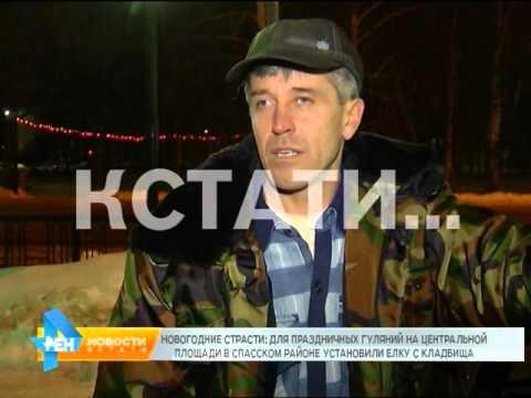 Для праздничных гуляний в Спасском районе установили елку с кладбища