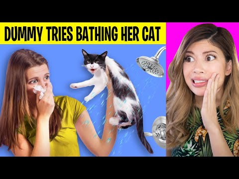 Girl Accidentally Makes Cat FREAK OUT