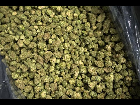 Boehner's Reversal on Weed `Monumental' for Marijuana