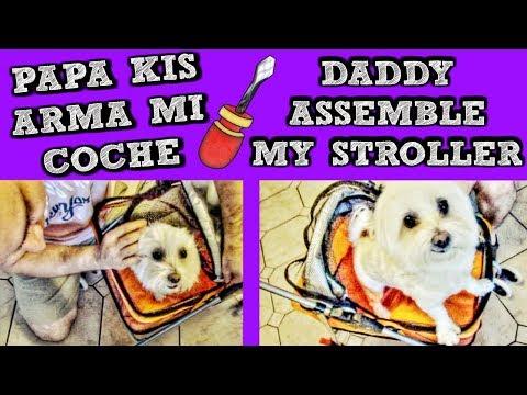 Coche para Perros I Pet Stroller, Coton de Tulear I Lorentix