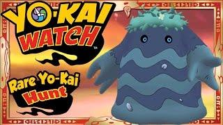 In Yo-Kai Watch Rare Yo-Kai Hunt, Abdallah attempts to find the RAR...