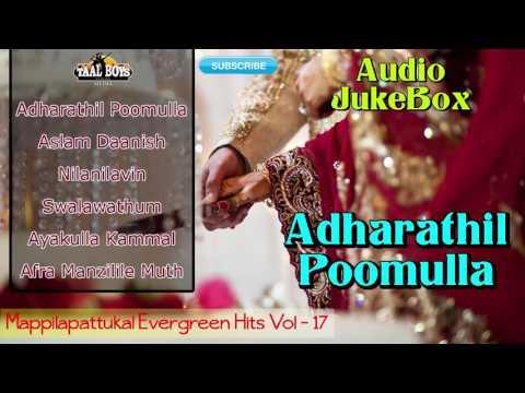 Badusha Hits| mappilapattukal malayalam nonstop mappila songs 2015
