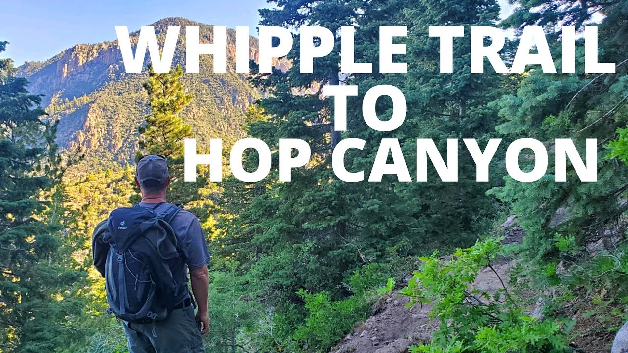 Hiking Whipple Trail to Hop Canyon, Pine Valley Mountains ...