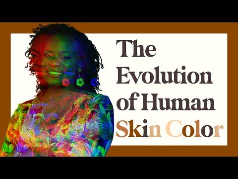 The Evolution of Human Skin Color
