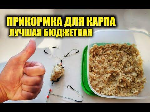 Прикормка на сазана в домашних условиях