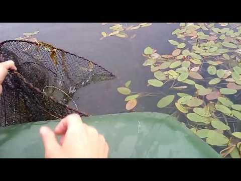 Рыбалка вне закона! Непростые, Простые хитрости