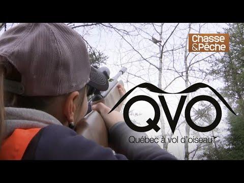 Chasse du petit-gibier à la Pourvoirie Richer - QVO saison 8