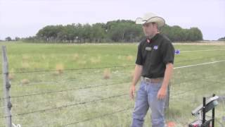 Building A Fence For Multiple Grazing Animals