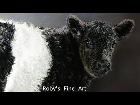 "Belted Galloway Calf Pastel Demonstration by Roberta ""Roby"" Baer PSA"