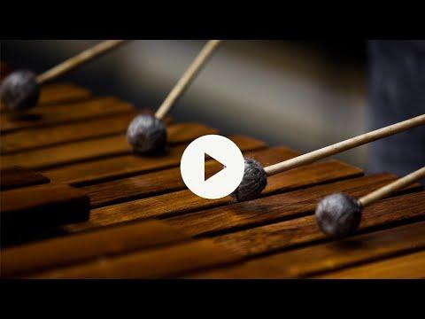 8Dio Studio Percussion Orchestral