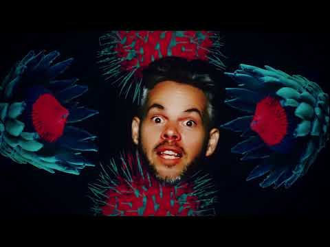 Pnau - Into The Sky (Official Music Video)