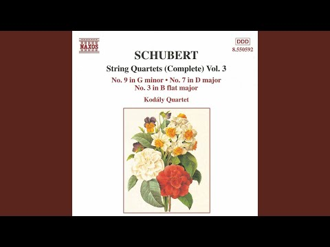 String Quartet No. 3 in B-Flat Major, D. 36: I. Allegro