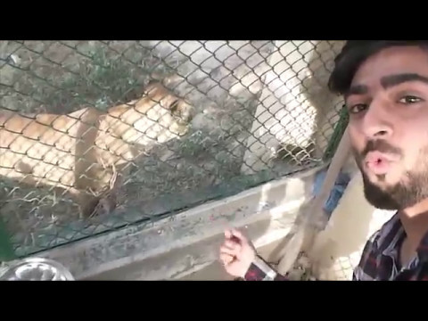 Safari Park Lahore Pakistan !!