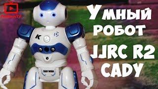 видео Роботы на пульте управления. Интерактивные игрушки для мальчиков
