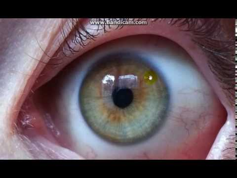 Changing Your Eye Color With Raw Foods Doovi