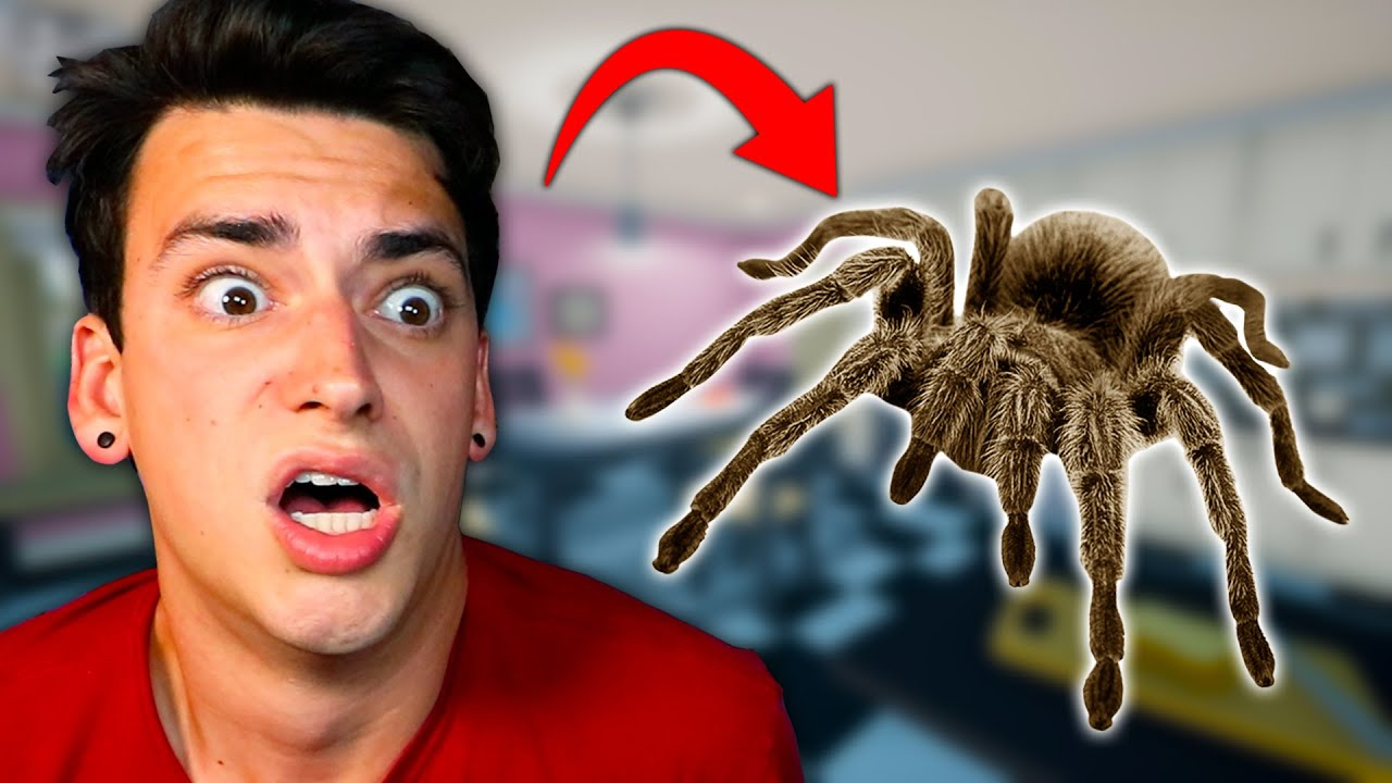 SCARY JUMPING SPIDER ATTACK! (Kill It With Fire)