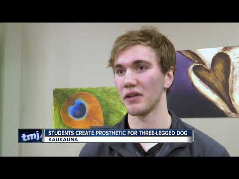 High schoolers building prosthetic limb for puppy