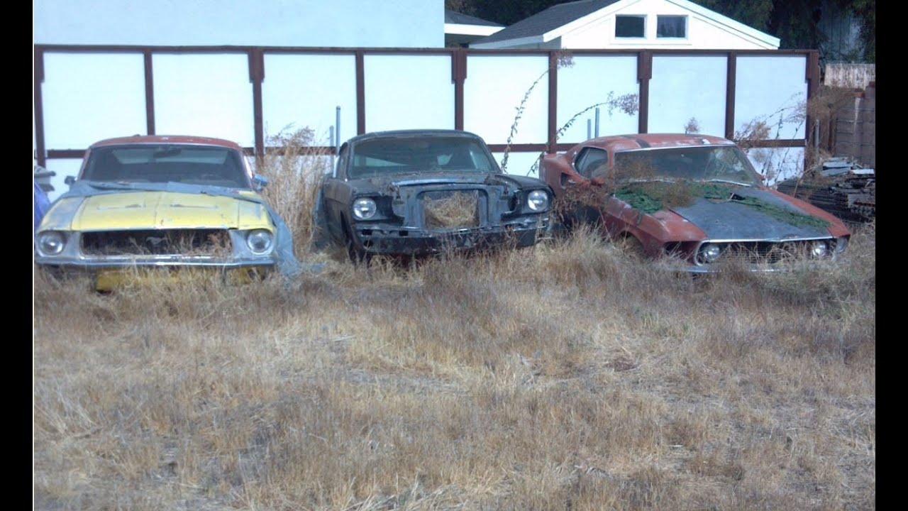 Yard Find Mustangs 1969 Mach 1 428 Scj 1968 S Fastback