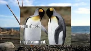 Животные секс 2   Веселая подборка видео с животными