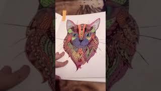 """Все мои раскраски на тему """"кошки,,"""