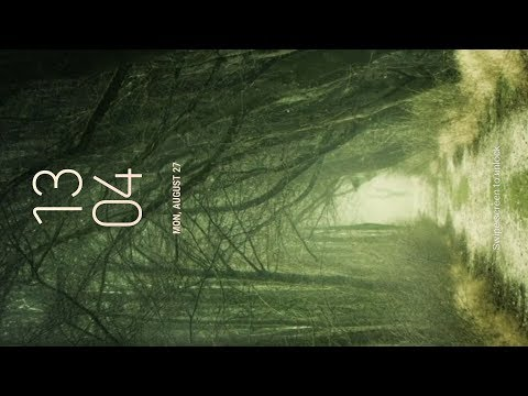 Real Forest Live Wallpaper Youtube