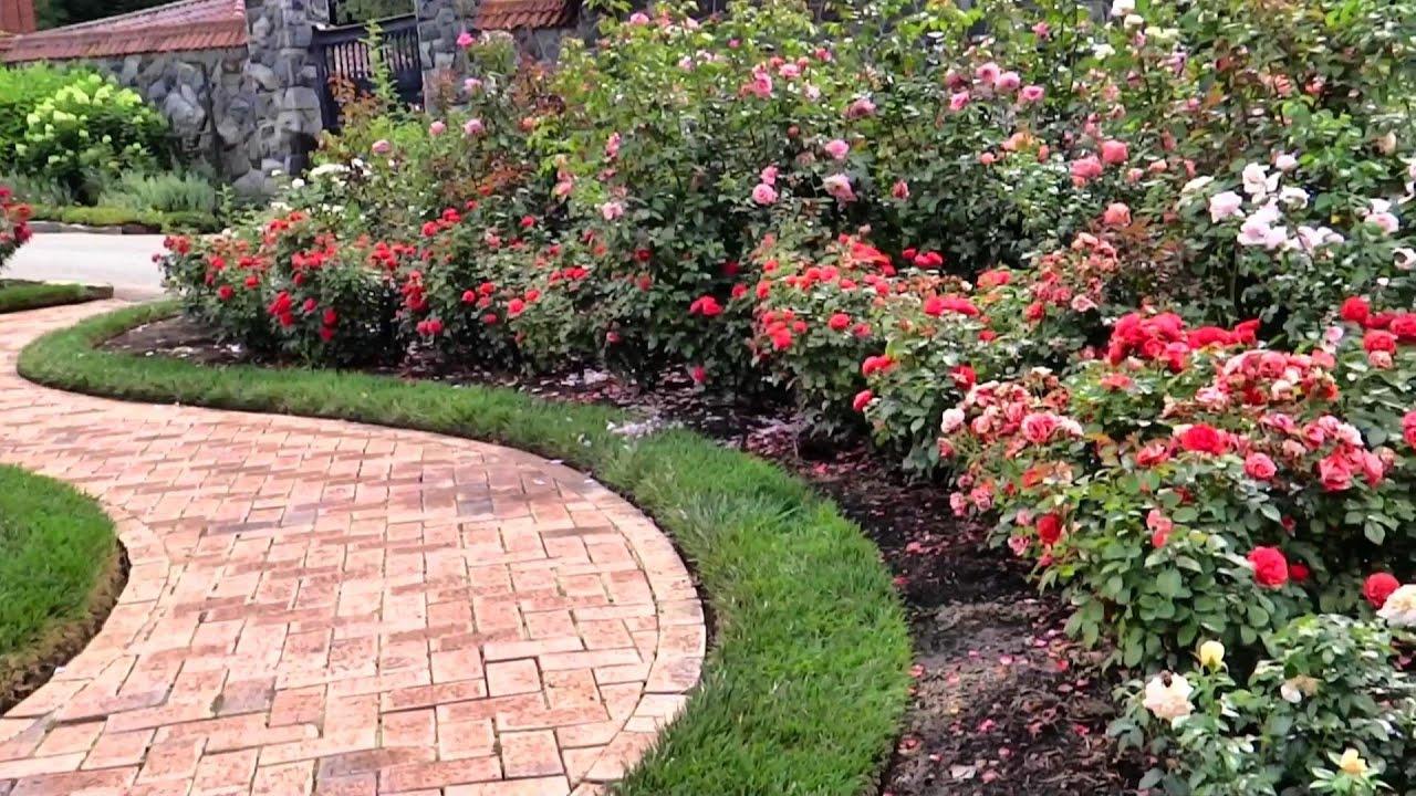 Rose Garden Of Biltmore Estate July 2015