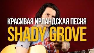 Как играть красивую ирландскую мелодию на гитаре Shady Grove - Уроки игры на гитаре Первый Лад