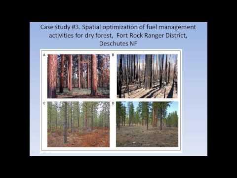 Landscape Treatment Designer: A multicriteria optimization tool for fuel treatment planning