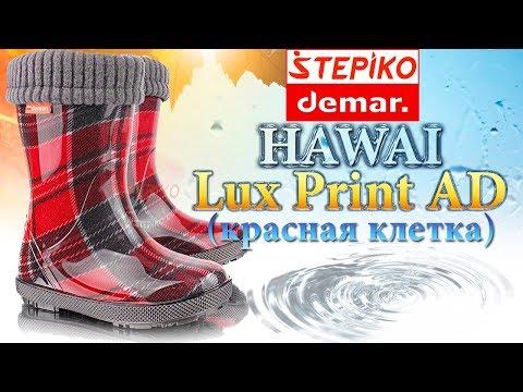 DEMAR Hawai Lux Print AD Красная клетка. Видео обзор на резиновые сапоги Демар 0048AD от Stepiko.com