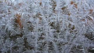 NELLIGAN, Emile - Winter Evening