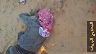 صيد الذئاب في ليبيا