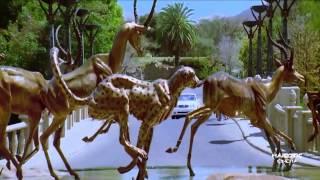 Just Love Me No Entry - Salman khan - HD songs