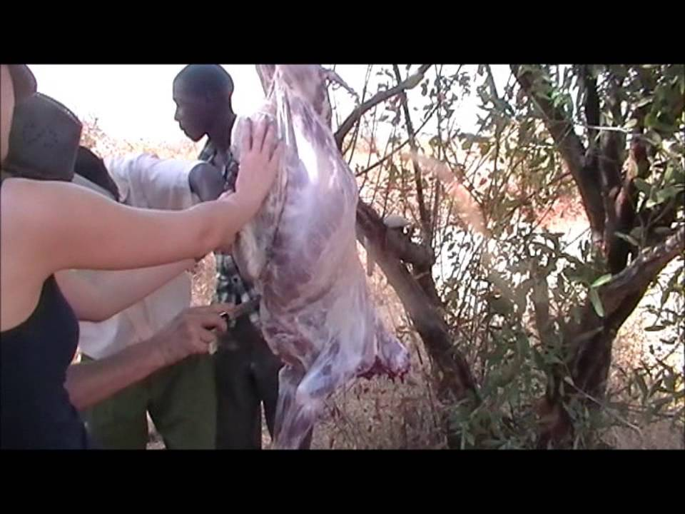 Goat skinning at Gatagani