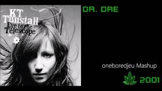 The Next Tree - KT Tunstall vs. Dr. Dre feat. Snoop Dogg, Kurupt & Nate Dogg (Mashup)