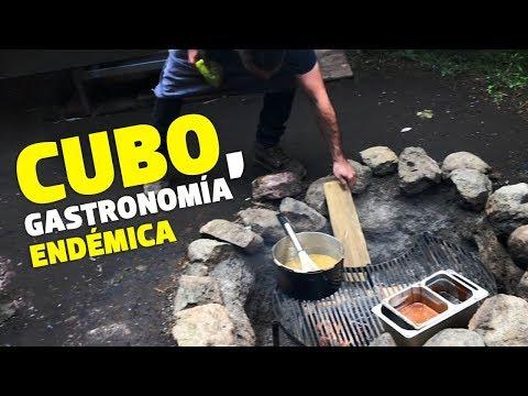 Vive CUBO, la experiencia gastronómica