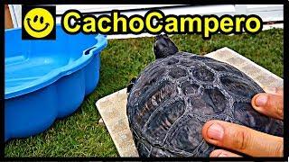 Cómo montar un estanque o acuario barato para tu tortuga de agua | 1080p | Trachemys scripta