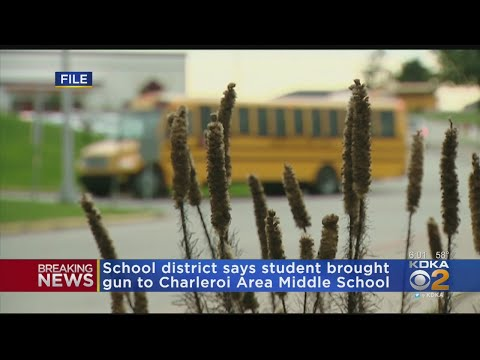 Student Brings Gun To Charleroi Area Middle School