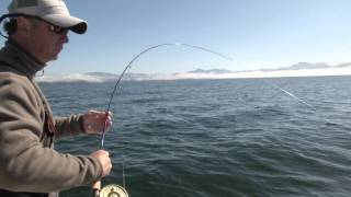 The Legacy Experience: Episode 3 - Calvert Island Flyfishing