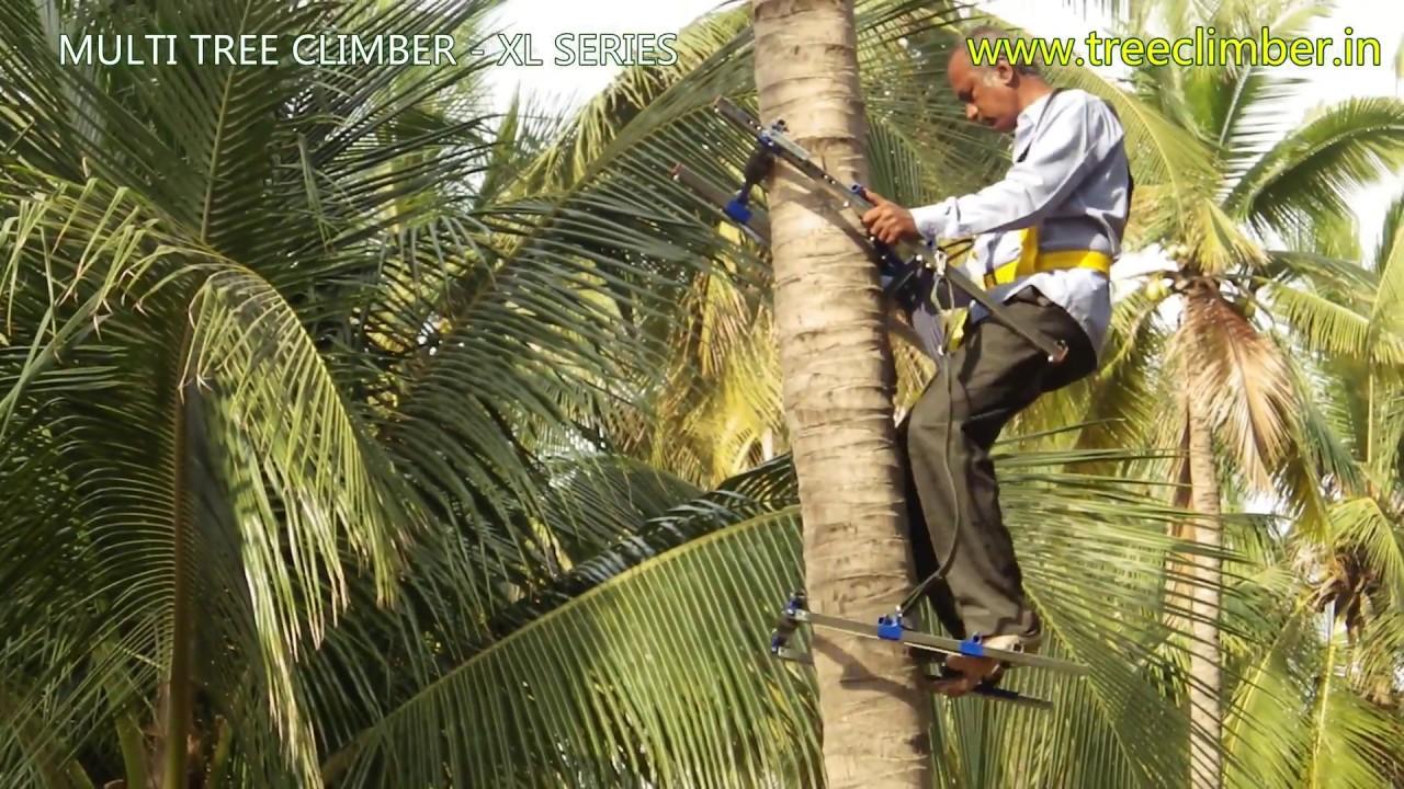Advance Coconut Tree Climber  YouTube