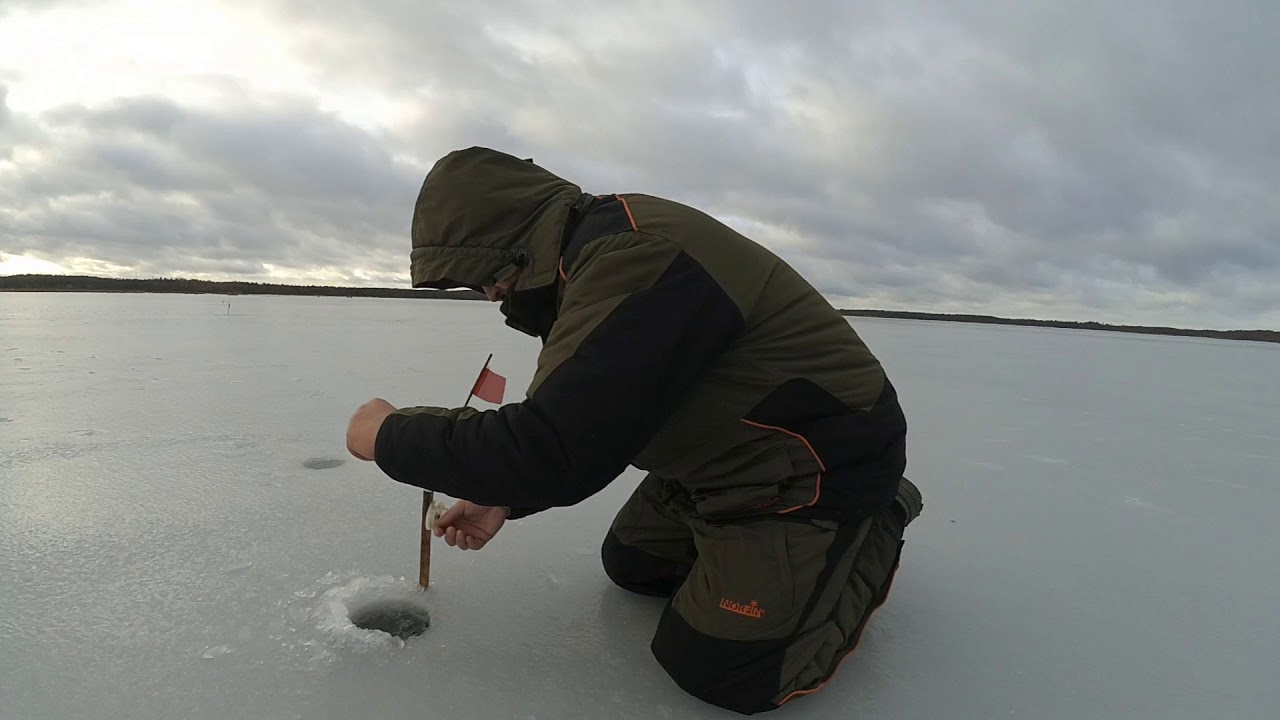 пруд в заречье рыбалка