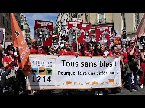 Marche pour la Fermeture des Abattoirs - Le défilé complet - Paris 2018