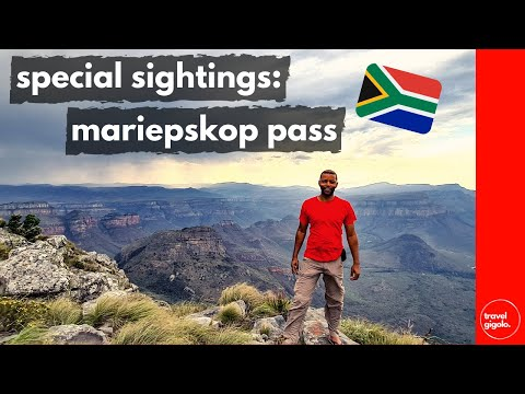 Special Sightings: Mariepskop Pass Blyde River Canyon (Mountain Passes of South Africa)[Overlanding]