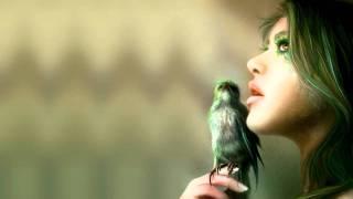 SEL - Sapnai (2011 Remix)