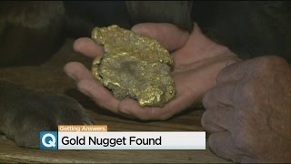 Large Gold Nugget Found Near Jackson