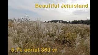 JEJU aerial 360 vr - Siver grass field