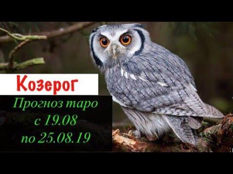 Козерог гороскоп на неделю с 19.08 по 25.08.19 _ Таро прогноз
